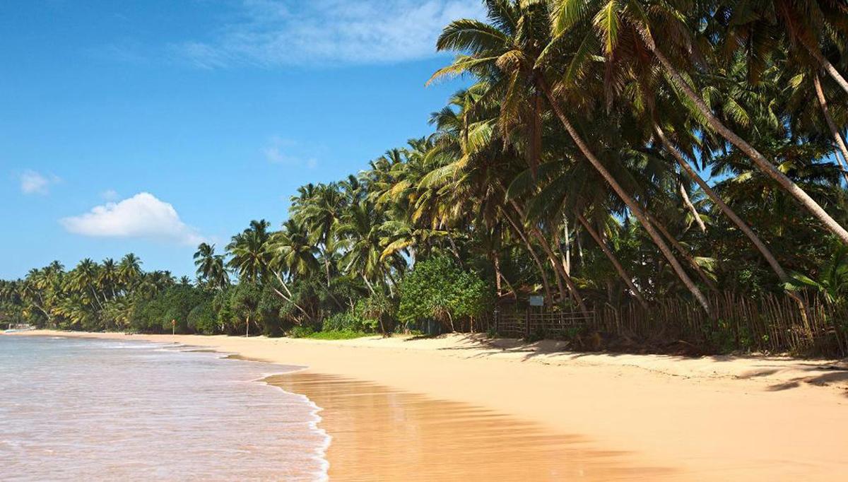 Туры на Шри-Ланку от компании everest