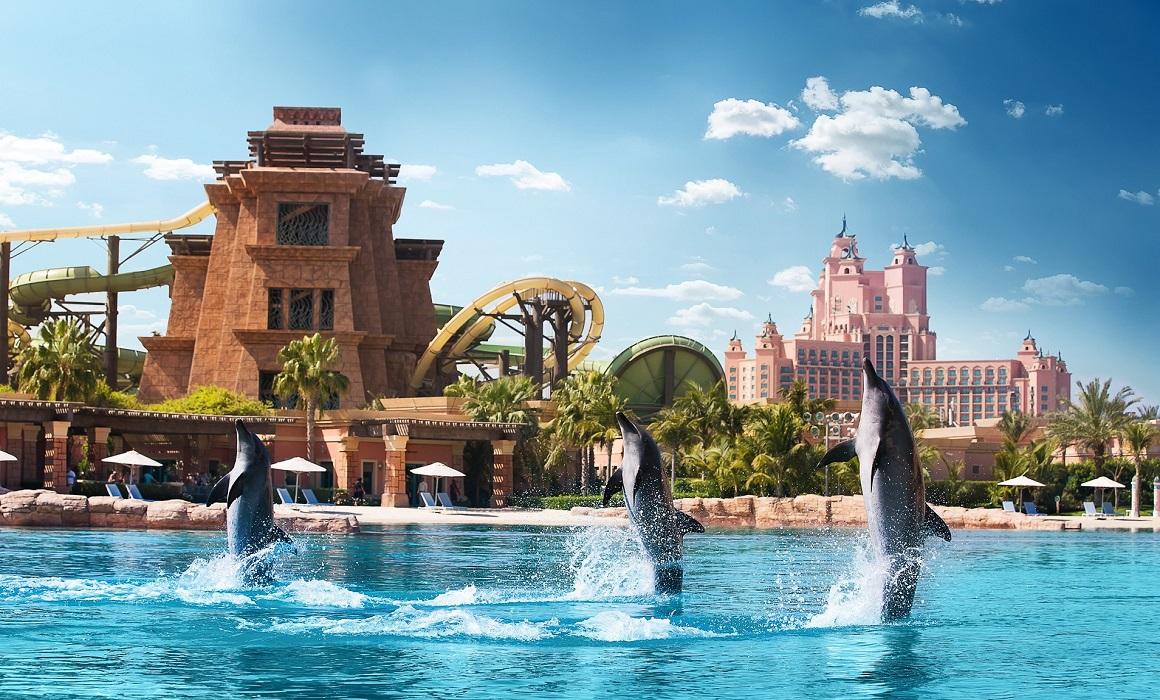 Дельфинари в Дубае