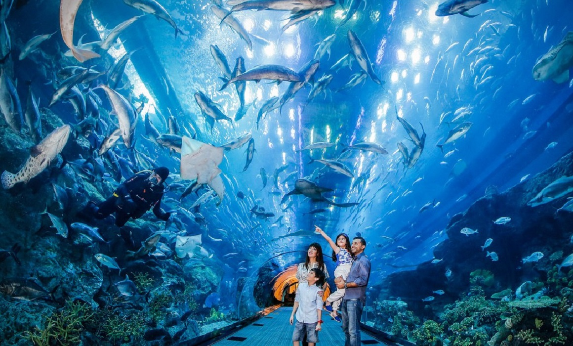 дубайсакий аквариум